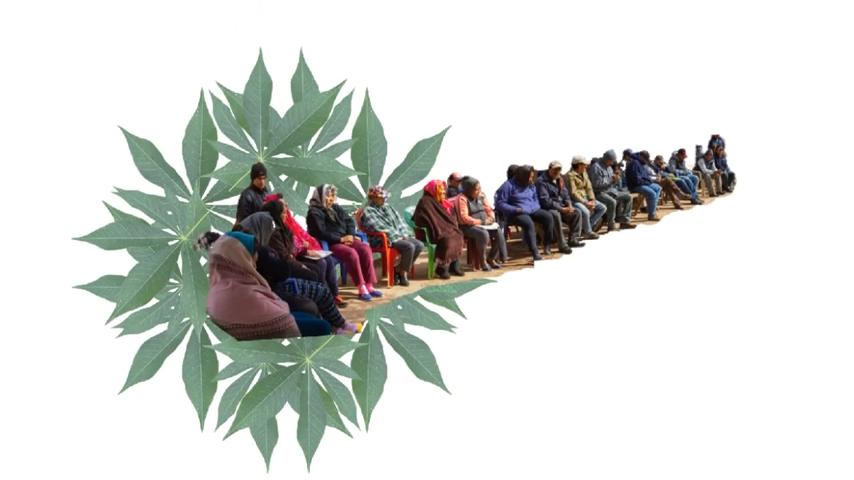 Protocolos autonómicos de consulta y consentimiento en pueblos indígenas - Parte III