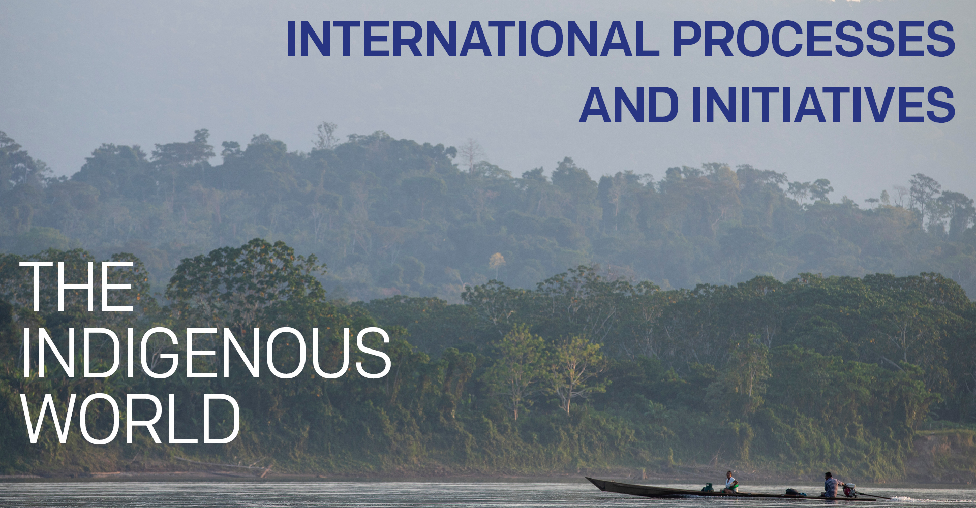 International Processes and Initiatives